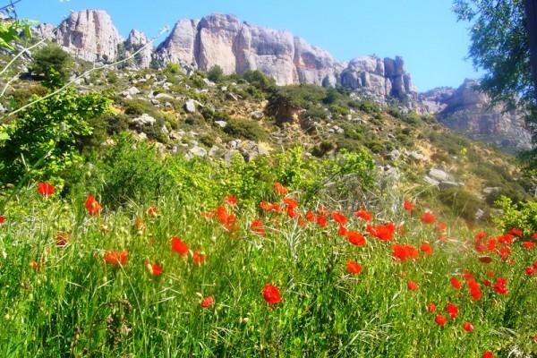 Mont Sant