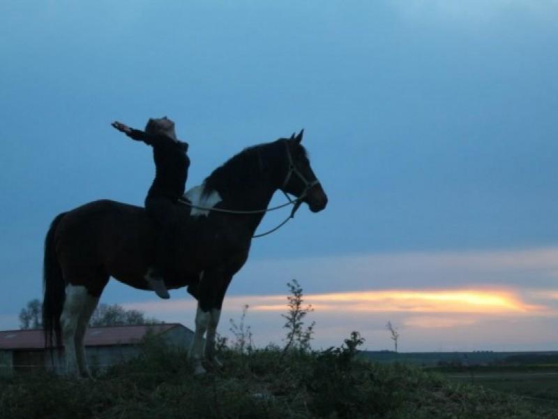 yoga-a-caballo1-600×400